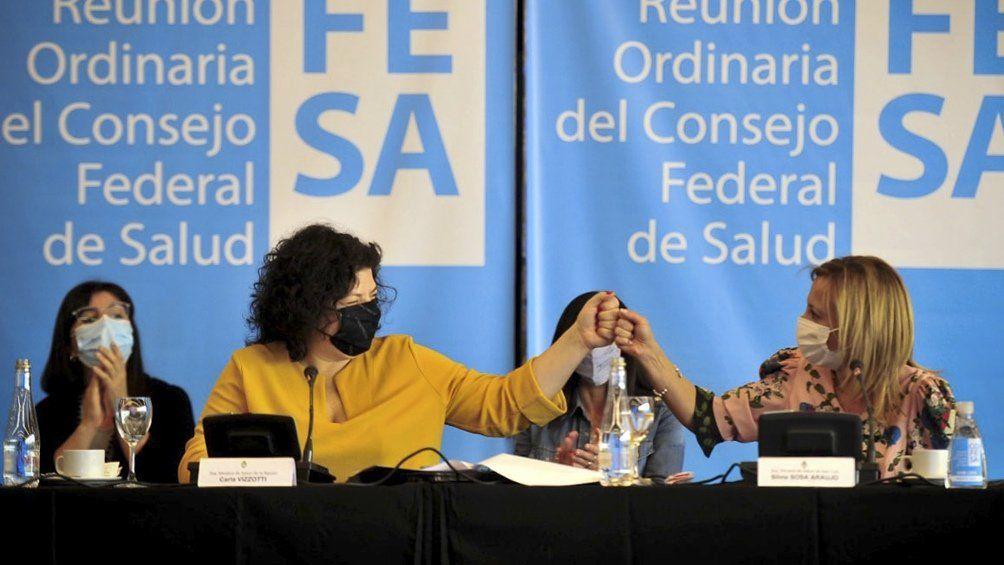 La ministra Vizzotti y su exposición en la reunión del Consejo Federal de Salud en San Luis.